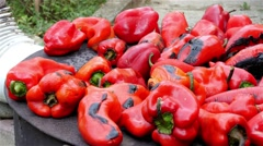 Roast peppers 4K, roasting red peppers on old furnace, pan right, close up. Stock Footage