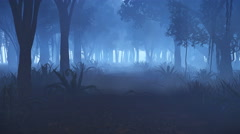 Motion through misty night forest 4K Stock Footage