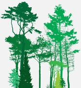 Image of Nature. Tree Silhouette. Eco banner. Vector Illustration - stock illustration