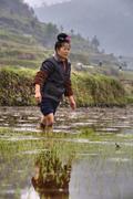 Stock Photo of Chinese peasant girl walking barefoot through mud of rice fields.
