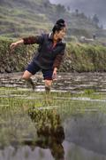 Asian farmer woman walking barefoot through mud of rice fields. - stock photo
