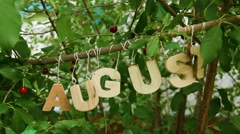 Calendar. August Word among cherry trees - stock footage
