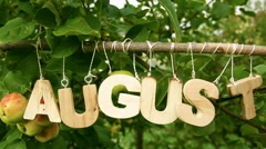 Calendar. August Word among apple trees. Close-up Stock Footage