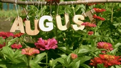 Calendar. August Word among the red flowers - stock footage