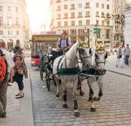 Horse carriage in Vienna - Austria Stock Photos