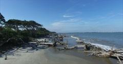 Jekyll Island Driftwood Beach Dolly In Stock Footage