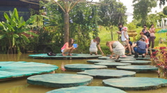 Tourists squat on planked footways to feed fish in pak lake Stock Footage