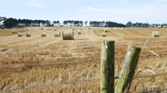 Hay stacks in a field  in Stonehaven Aberdeenshire, Scotland UK Stock Footage