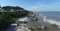 Jekyll Island Driftwood Beach Aerial Dolly In Stock Footage