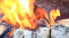 background campfire burning fire with birch wood - stock footage
