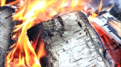 Background campfire burning fire with birch wood Stock Footage