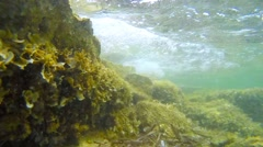 Sea floor in Porto Conte Stock Footage