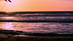 surfer with surfboard walking at sunset - stock footage