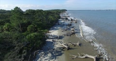 Jekyll Island Driftwood Beach Aerial Descent Stock Footage