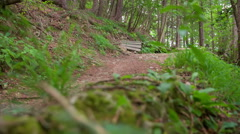 Downhill path in nature - stock footage