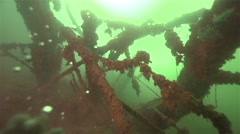 Underwater tree at the bottom of the lake formed by the branches bubbles Stock Footage