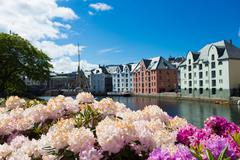 Flowers of Alesund Stock Photos