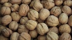 Walnut useful tasty - stock footage