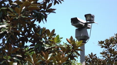Security Camera behind bushes 4k Stock Footage