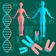 Set genetics people - stock illustration