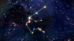 11 Aquarius Horoscope star - stock illustration