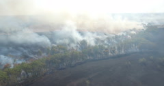 Forest fires 6 Stock Footage