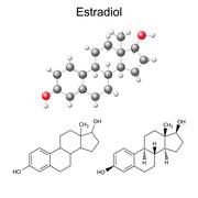 Structural chemical formulas and model of estradiol molecule - stock illustration