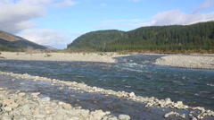 Wairau River flowing in spring, New Zealand Stock Footage