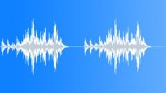 Lorikeet 10 Äänitehoste