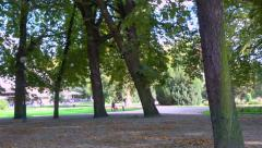 Public park, gardens, old bandstand, kiosk - sunny afternoon - panoramic shot - stock footage