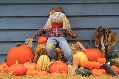 Harvest and Thanksgiving and Scarecrow - stock photo