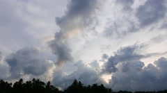Clouds above Palm Trees Time Lapse. - stock footage