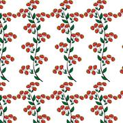 Branches red berries natural seamless background - stock illustration