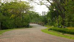 Tiled pathway curved coming through tropical park area, nobody at Stock Footage