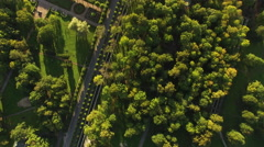 Aerial drone shot zooming from sky to bride and groom in a park Stock Footage