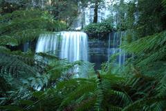 waterfall in Tasmania - stock photo