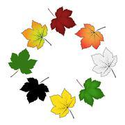 Set of colorful maple leaf . Vector illustration isolated on white background - stock illustration