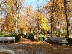 Two benches in an autumn ornamental garden Stock Photos