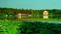 Lake in september, kayaks, forest, zen, panorama - stock footage