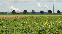 Coal fired electric powerstation with crop in foreground - stock footage