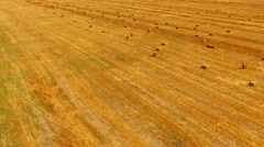 Bales Of Hay Lying On Bright Yellow Stubble Field Stock Footage