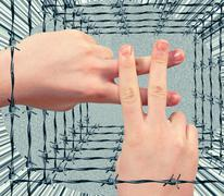 The gesture of the hands in the form of a lattice Stock Photos