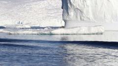 Lonley Leopard Seal float on an Iceberg Stock Footage