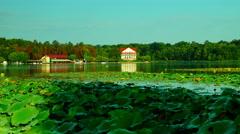 Lake in september, kayaks, forest, zen,  zoom in - stock footage