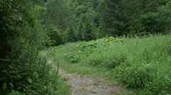 Tracker walking on a mountain path. - stock footage