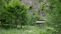 Abandoned mountain cabin in the middle of the forest. - stock footage