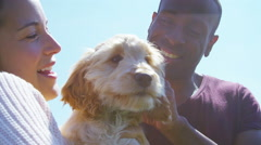 Couple relaxing in the park with cute young cocker-poo puppy. - stock footage