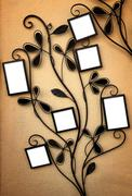 Curly Picture Holder Stock Photos