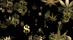 Flying USA dollar signs and cannabis leafs in gold on black Stock Footage