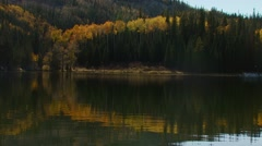 Reflection of forest in lake Stock Footage